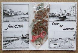 (K432) - Souvenir Cros De Cagnes - Cagnes-sur-Mer