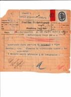 ARGENTINA  Telegram Passport 1925 Télégramme Passeport ARGENTINE – Reisepaß - Historical Documents