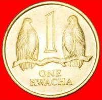 · FALCONS: ZAMBIA ★ 1 KWACHA 1992 UNC MINT LUSTER! LOW START ★ NO RESERVE!!! - Zambie