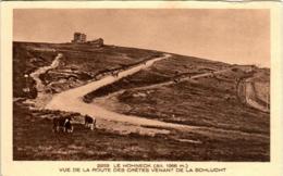 31ksst 241 CPA - LE HOHNECK - VUE DE LA ROUTE DES CRETES - France