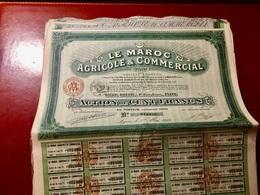 LE  MAROC  AGRICOLE  &  COMMERCIAL ------- Action  De  100 Frs - Africa
