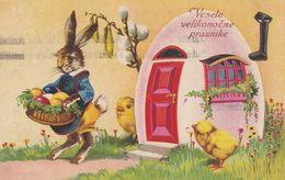 Dressed Rabbit Easter Bunny Egg House Chicks Basket Old Postcard 1939 - Animales Vestidos