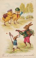 Dressed Rabbit Easter Bunny Guitar Music Butterfly Net Chicks Old Postcard 1930 - Animales Vestidos