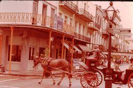 Photo Diapo Diapositive Slide USA ETATS UNIS N°17 New Orleans Le Centre Cheval Horse Calèche BIENVILLE VOIR ZOOM - Diapositives