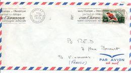 NIGER SEUL SUR LETTRE POUR LA FRANCE - Niger (1960-...)