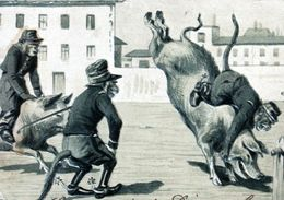 Singes Cochons Saut D'obstacle RELIEF GAUFFRE EMBOSSED Pigs Monkeys Show Jumping St Quentin 1903 - Animales Vestidos