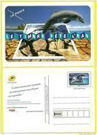 Entier Postal Dauphin 2010 , Neuf  Le  Timbre Fête L'eau - Enteros Postales