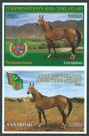 Turkmenistan - Hojas Yvert 31/2 ** Mnh Fauan Caballos - Turkmenistan