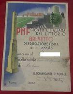 Novi Ligure PNF GIL Diploma Maestro Educazione Fisica Illustratore Speranza - Diploma & School Reports