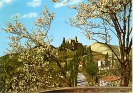 BRISIGHELLA  RAVENNA  Panorama Del Monticino  Santuario - Ravenna