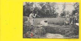 HAÏPHONG Arrosage Des Rizières (Dieulefils) TONKIN Viet-Nam - Vietnam
