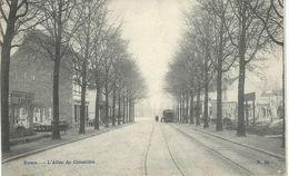 EVERE : L'Allée Du Cimetière - TRES RARE CPA - Cachet De La Poste 1907 - Evere