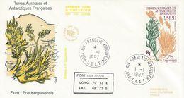 Terres Australes Et Antarctiques Françaises 1997  La Flore - FDC