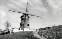 DOEL (O.Vl.) - Molen/moulin/mill - De Scheldemolen Van Het Verloren (?) Polderdorp... Opname: 1995. - Beveren-Waas