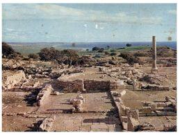 (A 40) Cyprus - Curium Basilica - Cyprus
