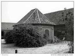 VRASENE - Beveren (O.Vl.) - Molen/moulin - Historische Prentkaart (1992) Van Rosmolen Ter Biest Met Verdwenen Hoeve - Beveren-Waas