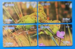 China X4 Puzzle Parrot Bird Parakeet Oiseaux Vogel Birds Parrots Uccello Pappagallo - Perroquets