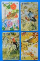China X4 Bird Hawk Eagle Oiseaux Vogel Birds Uccello - Oiseaux