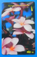 Northern Mariana Islands Plumeria Flower Fiore Blumen Micronesian - Fiori