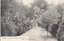Postkaart - Carte Postale - MEERSEL-DREEF - Jesus In T Hofken Van Olijven - L-V. Hoof Roelans  (A266) - Hoogstraten