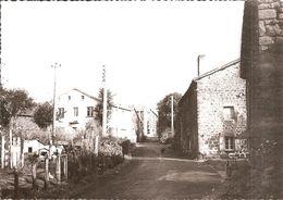 LANDOS (43) Une Rue Du Village (LA FRANCE TOURISTIQUE)  CPSM GF - Otros Municipios