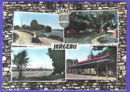 Carte Postale 45. Jargeau  Entrée Du Camping  Les Halles   Très Beau Plan - Jargeau