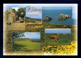 UNITED KINGDOM, Alderney / Postcard Not Circulated - Alderney