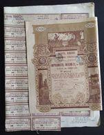 "ROMANIE * ROMANIA * REGATUL ROMANIEI 1000 LEI * ROUMENIE * ROEMENIE * 1920 * LITOGRAFIA  "" SAMITCA "" - Hist. Wertpapiere - Nonvaleurs"