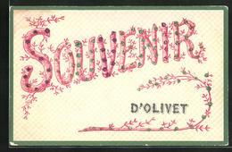 CPA Olivet, Des Fleursgeschmücktes Souvenir D`Olivet - Frankreich