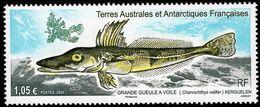 TAAF - 2020 - Crocodile Icefish - Channichthys Velifer - Mint Stamp - Ungebraucht