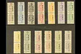 LIBYA  PARCEL POST 1915-24 Overprints Complete Set (Sassone 1/13, SG P17/29), Never Hinged Mint Horizontal Pairs, Fresh  - Italie