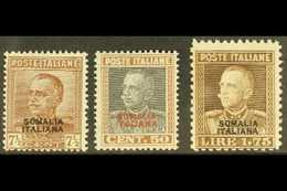 SOMALIA  1928 King Overprints Complete Set, Sassone 116/18 (SG 89, 93 & 99), Never Hinged Mint, Very Fresh. (3 Stamps) F - Italie