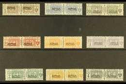 SOMALIA  PARCEL POST 1917-19 Overprints Complete Set (Sassone 1/9, SG P23/31), Fine Mint Horizontal Pairs, The Key 20c & - Italie