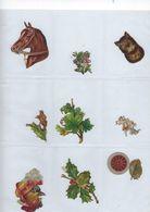 Chromo Decoupis Ancien 10   Fleurs Et Animaux - Fleurs