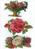 Chromo Decoupis Ancien  3  Fleurs  Hauteur 9 Sur 14 Cms   Chaque Environs - Fleurs