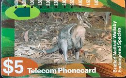 AUSTRALIE  -  Telecom Australia  -  Bridled Nailtail Wallaby  -  $ 5 - Australie