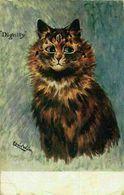 Louis Wain Cat Kitten Dignity 1904 Signed Postcard - Illustrateurs & Photographes