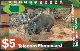 AUSTRALIE  -  Telecom Australia  -  Wombat  -  $ 5 - Australie