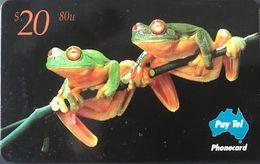 AUSTRALIE  -  Pat-Tel  -  Red Eyed Tree Frog  -  $ 20 - Australie