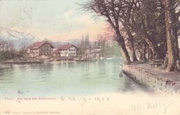 1748/ Thun, Die Aare Bei Scherzligen, 1903 - BE Berne