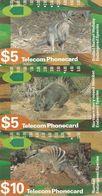 Australia, N920512 - N920533, Set Of 3 Cards, Endangered Species 1993,Kangaroo, Wallaby, Wombat, 2 Scans.   Please Read - Australie