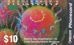 Australia, N930922a,, Microscopic World, Butterfly Eggs2 Scans. - Australie
