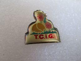 PIN'S   T C I G - Pin's