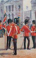 Royal Dublin Fusilers , The Colors , 40-60s ; Ireland - Uniformes
