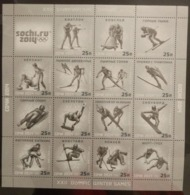 Russia 2014. Winter Olympics In Sochi. Winter Sports. Souvenir Sheet MNH - Inverno 2014: Sotchi
