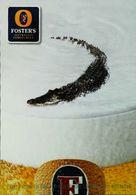 Carte Postale Publicité Bouteille De Bière - Publicité  Foster's Bière Alligator - Bière