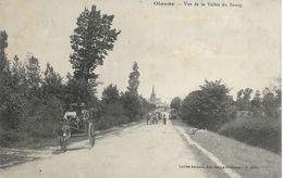 85. Vendée, Olonne, Vue De La Vallée Du Bourg - Sables D'Olonne