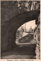 05- HAUTES ALPES - BRIANCON - CPSM GRAND FORMAT - Le Chemin De Ronde - Briancon