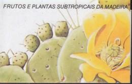 MADEIRA  Markenheftchen 12, Gestempelt, Subtropische Früchte Und Pflanzen 1992 - Madère