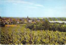 58 - POUILLY SUR LOIRE : Vue Gle Prise Des Vignobles - CPSM CPM Village (   H ) Grand Format - Nièvre - Pouilly Sur Loire